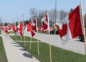 Community Gifts - Wounded Warriors Canada - 1 flag for each fallen Canadian soldier