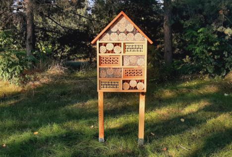 hotel dla owadów pożytecznych